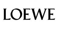 Loewe reparatie Ede